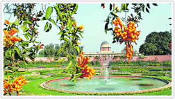 The Mughal Gardens
